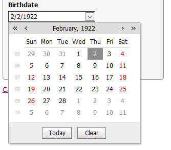 DevExpress date picker. SHINY.